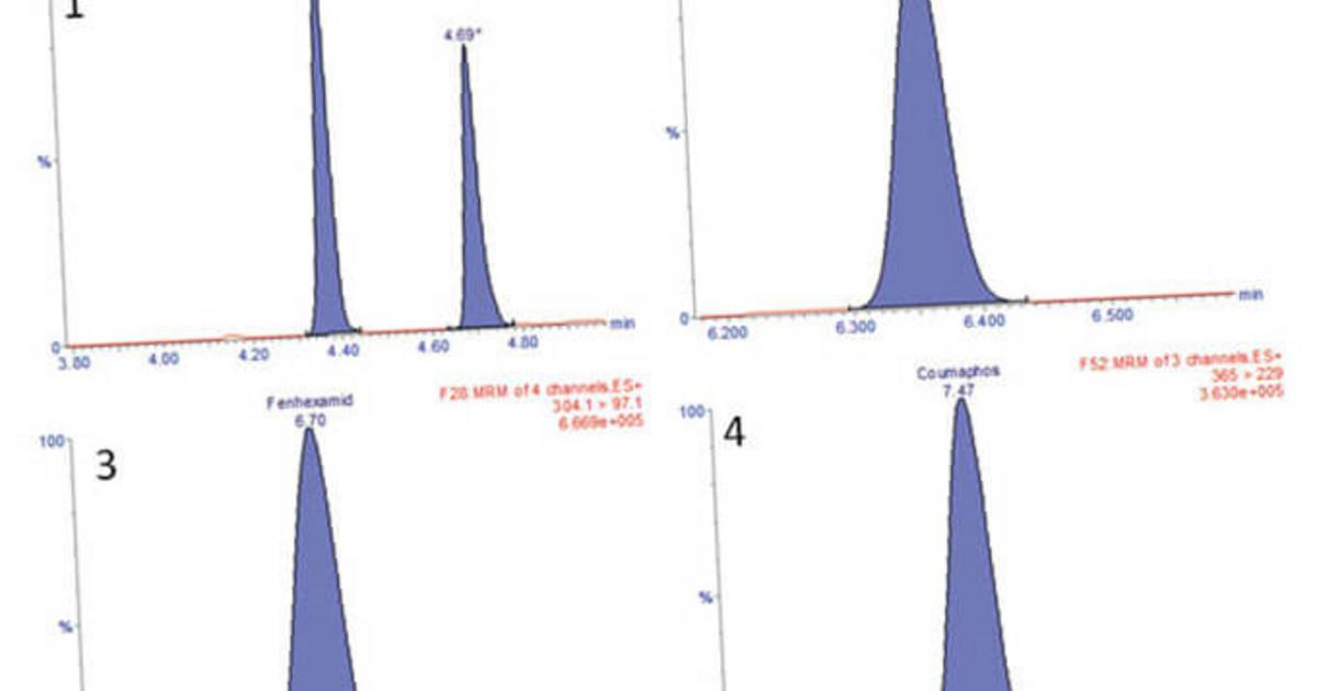 Confocal Raman Microscopy in Pharmaceutical Development
